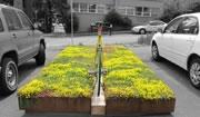 Ride a Bike + Plant a Garden